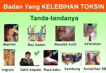 Badan Kelebihan Toxin, Kapan Wajib DETOX ?